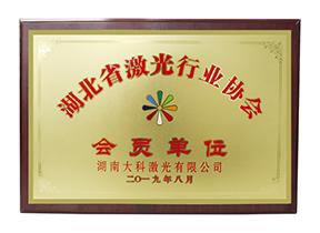 湖北省激光行业协会会员单位